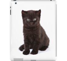 Black kitten iPad Case/Skin