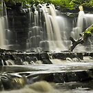 Scarloom Waterfall, Holden, Lancashire by Steve  Liptrot