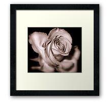 Rosebud Victoriana Framed Print
