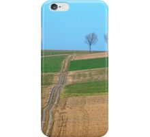 Endless pathway into the distance | landscape photography iPhone Case/Skin