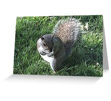 Garden Squirrel on Green Greeting Card