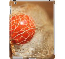 cage dorée iPad Case/Skin