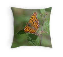 Comma Butterfly on Nettles  Throw Pillow