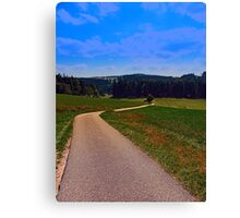 Yet another boring hiking trail picture | landscape photography Canvas Print
