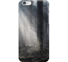 22.5.2015: Spring Morning in Pine Tree Forest II iPhone Case/Skin