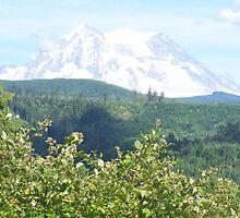 MT RAINIER IN SUMMERTIME  by MsLiz