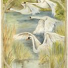 Flying Swans by morgansartworld