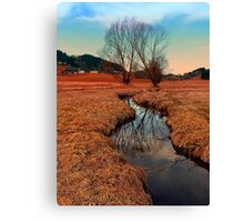 A stream, dry grass, reflections and trees   waterscape photography Canvas Print