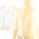 Perfect Angel - Wingspan by sparksart