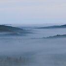 Fog Lifting by Tracy Wazny