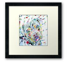 WATERCOLOR PIT BULL Framed Print