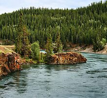 Yukon River, near Whitehorse, YT. by Vickie Emms