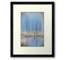 Tree Skeletons at Dawn.  Yellowstone National Park. Wyoming. USA. Framed Print
