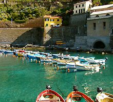 Boats in Cinque Terre by Karen Ashenberner