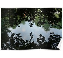 In a Clamshell of Leaves Poster