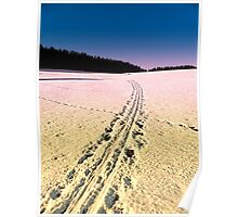 Cross country skiing | winter wonderland | landscape photography Poster