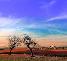 Trees, sunset, clouds, panorama and village | landscape photography by Patrick Jobst