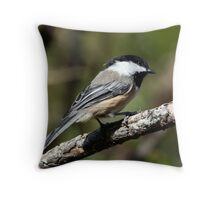 Black-Capped Chickadee (2010 Calendar Aug) Throw Pillow