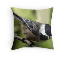 Black-Capped Chickadee (2010 Calendar Jul) Throw Pillow