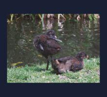 Moorhen chicks One Piece - Long Sleeve