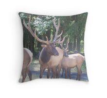 Ho! Ho! Ho! I Got My Reindeer Ready  Throw Pillow