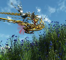 Robort's Flying Machine by Syd Baker