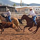 Team Calf Roping by Marvin Collins