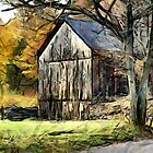 Roadside Barn by LjMaxx