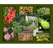 English Garden Collage Photographic Print
