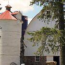 country barn by Lynne Prestebak