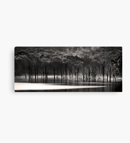 Trees at Reservoir, VI Canvas Print