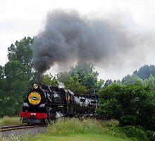 "Steam Engine ""Joanne"" by David F Putnam"