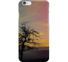 Old tree and colorful sundown panorama | landscape photography iPhone Case/Skin