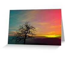 Old tree and colorful sundown panorama | landscape photography Greeting Card