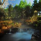 Kerosine creek thermal stream, Rotorua by Paul Mercer