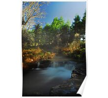 Kerosine creek thermal stream, Rotorua Poster