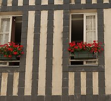 A Pair of Windows, La Rochelle, France by Elaine Teague