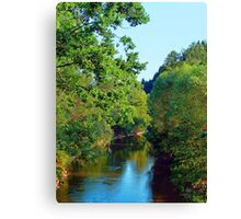 A summer evening along the river III | waterscape photography Canvas Print