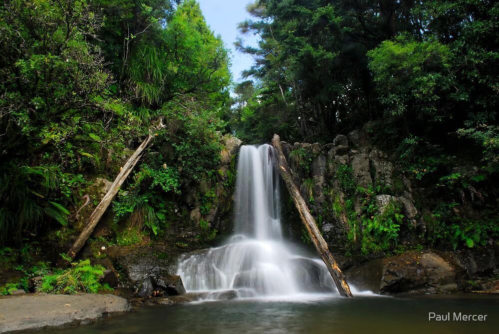 Waiau falls Coromandel by Paul Mercer