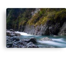 West coast river Canvas Print