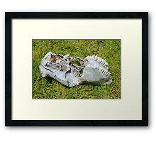 Cow Skull in a Meadow Framed Print