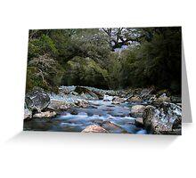 Cledau River,Fiordland National Park Greeting Card