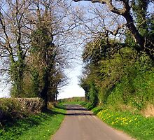 An English Country Road by trish725