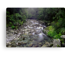 Small stream near the Cascade, South Westland Canvas Print