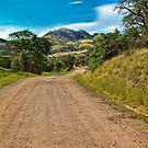Box Canyon Road by Barbara Manis