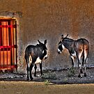 The two Donkeys by John Miner