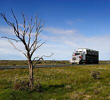 Cobb Highway at Wanganella by Darren Stones