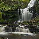 Scaleber Force by Steve  Liptrot
