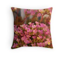 Small Miracles Throw Pillow