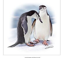 CHINSTRAP PENGUIN 4 by DilettantO